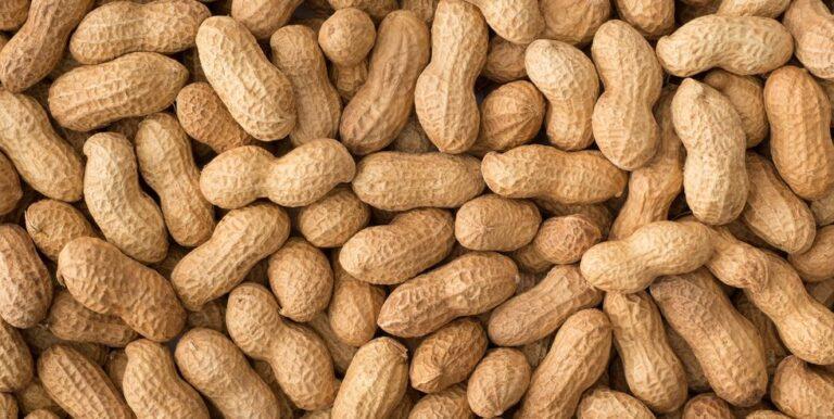 Threefer: Peanuts Songs